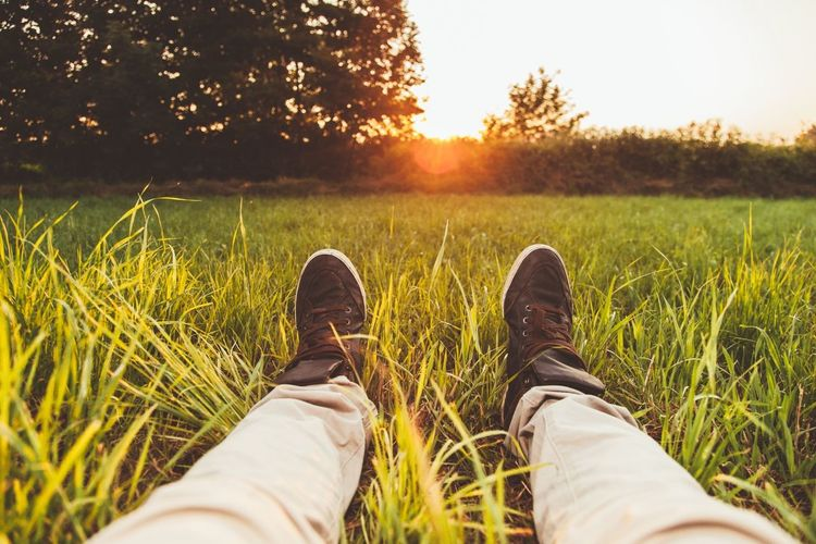 Low Section Of Man Lying On Grassy Field During Sunset