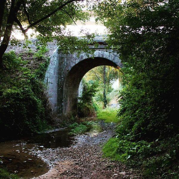 CaminodeSantiago Caminar