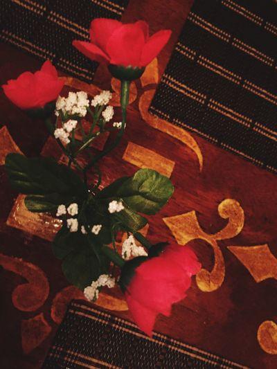 Flower Indoors  Red Rose - Flower