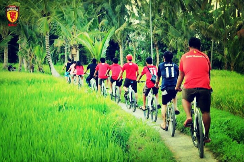 Gowes Hits Bali