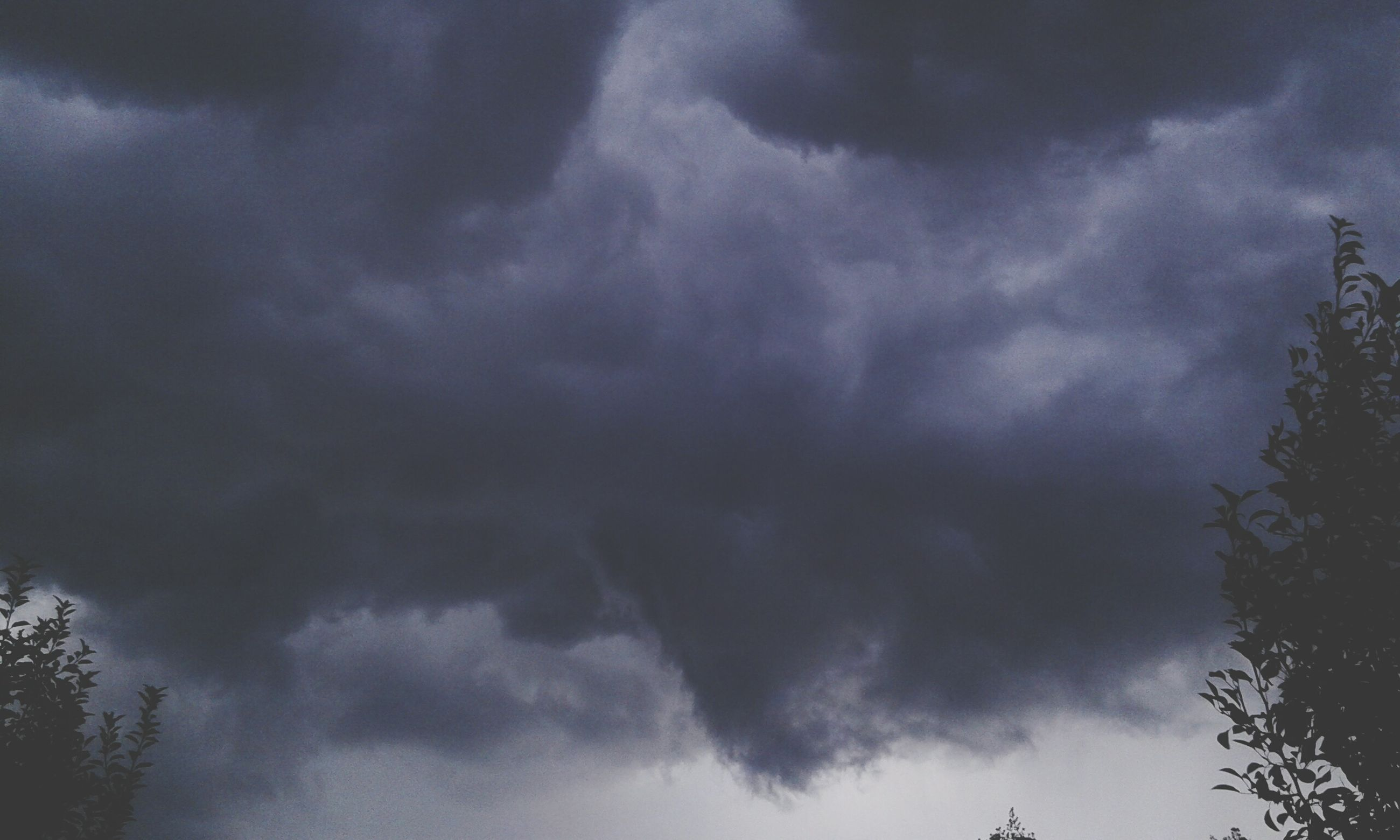 sky, low angle view, cloud - sky, cloudy, weather, beauty in nature, overcast, tranquility, scenics, nature, storm cloud, tranquil scene, cloudscape, tree, cloud, silhouette, dramatic sky, idyllic, outdoors, atmospheric mood