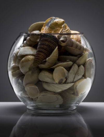 Abundance Bowl Bowl Of Shells Close-up Container Detail Focus On Foreground Gradient Background Grey Group Of Objects Large Group Of Objects No People Product Photography Round Vase Sea Shells Seashells Selective Color Selective Focus Shells Still Life Vase
