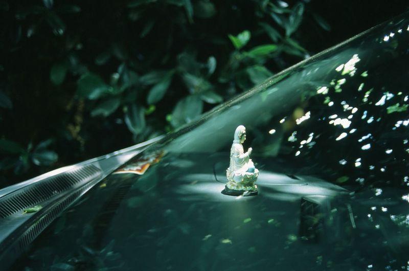 Close-up of statue in car