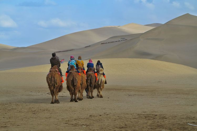 Rear View Of Tourists Riding Camel At Desert