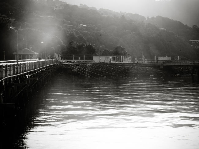 Fishing off the wharf. Plenty of lines in the water Black And White Black And White Photography Fishing Fishing Lines Harbour Outdoors People Fishing Water Wharf