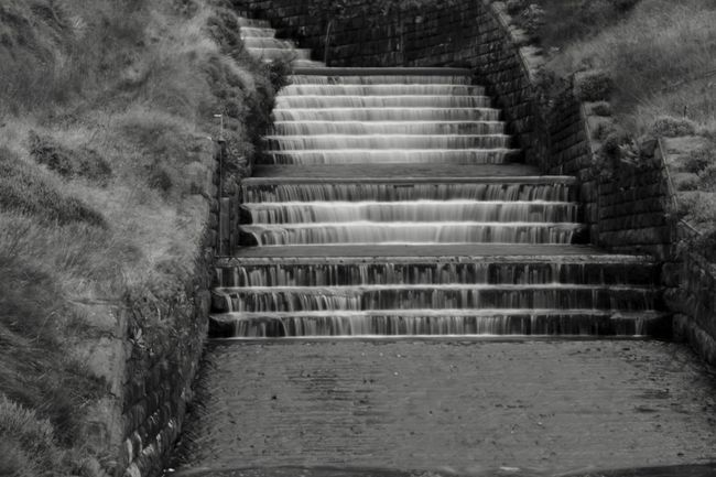 Steps Staircase Steps And Staircases No People Day Outdoors Architecture Tree Hand Rail Nature The Week On EyeEm Scenery Beauty In Nature Tranquil Scene Scenics Beauty Water
