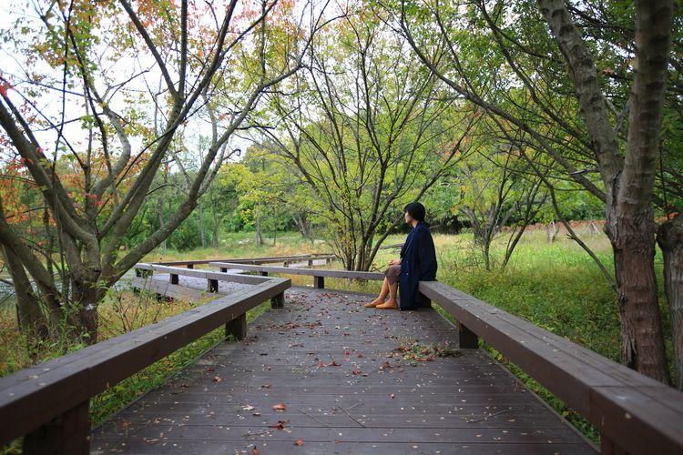 Side view of woman sitting on boardwalk amidst trees on field