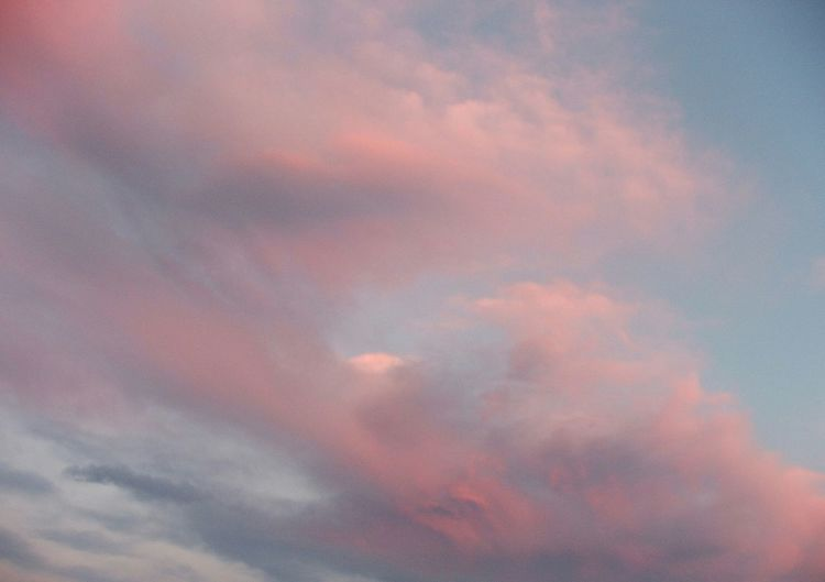 Colorful sky ||| Beauty In Nature Beautiful Nature Supercolor Sunset No Filter, No Edit, Just Photography MyPhotography Sky Cloud - Sky Pink Color Beauty In Nature Nature Day Meteorology Heaven Cloudscape Romantic Sky