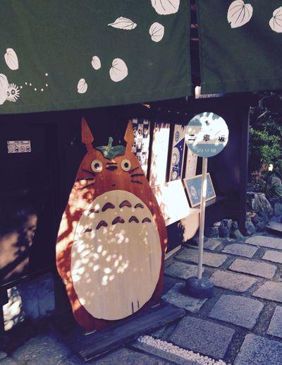 Close-up Cute Hayao Miyazaki Japan Kyoto Memory No People Peace Summer Totoro