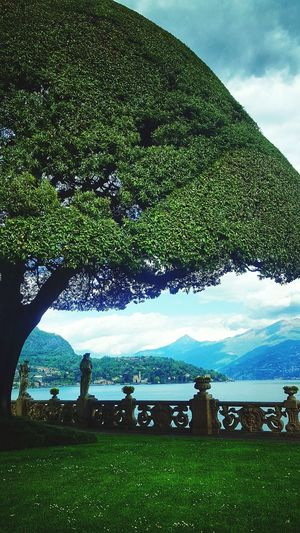 Taken at Villa del Balbianello, Lenno, Italy. Italy🇮🇹 Italy Italia Italy Photos Lake Como Lake Como Italy Lake Como Villa Outdoors Day Beauty In Nature Cloud - Sky Water Sky Grass Green Color Beauty Tree Mountain No People Nature First Eyeem Photo