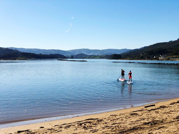 Rear view of men paddle boarding in sea against clear sky