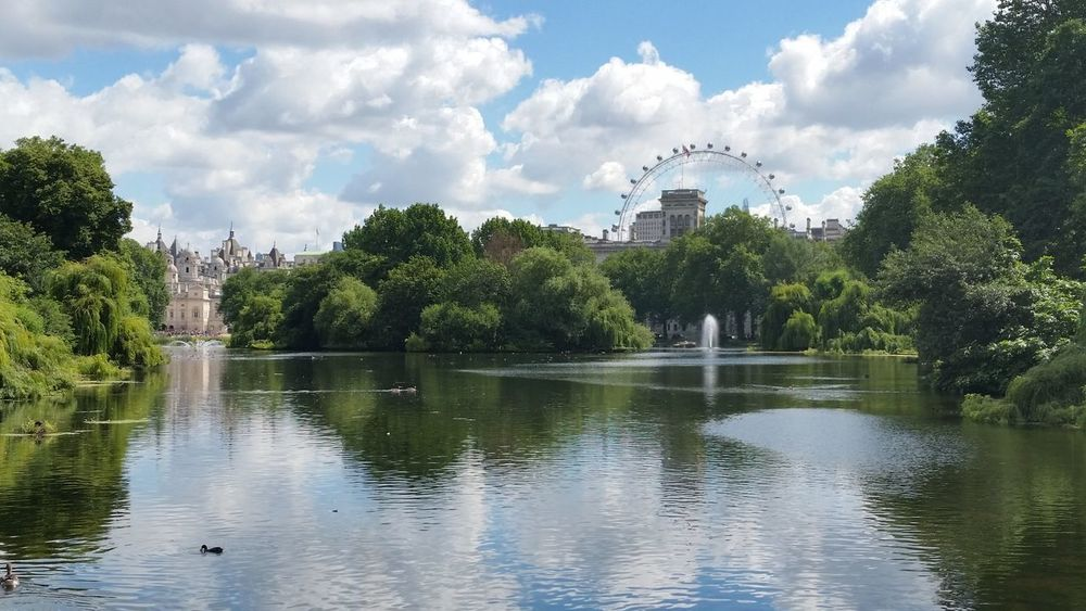 Buckingham Palace City Cloud - Sky Day England Great Britain Lake London London Eye Nature No People Outdoors Park Reflection Scenics St James Park  St James Park London  Travel Destinations Tree United Kingdom Water
