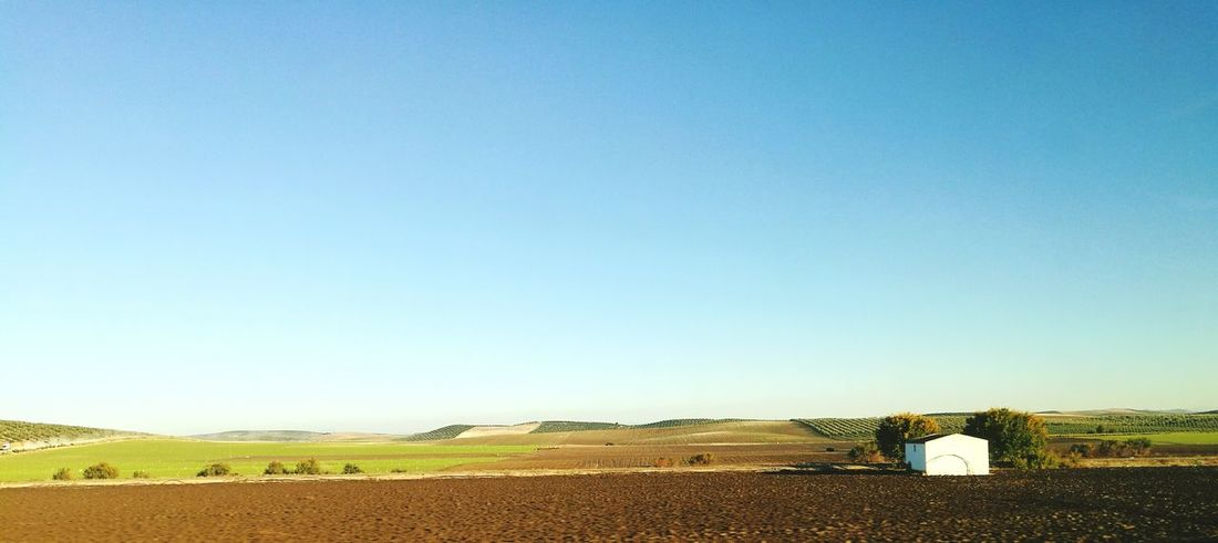 Rural Scene Paisaje Natural Beauty Paisaje Rural  Blue Clear Sky Agriculture Sky Nature Rural Scene No People Outdoors Day