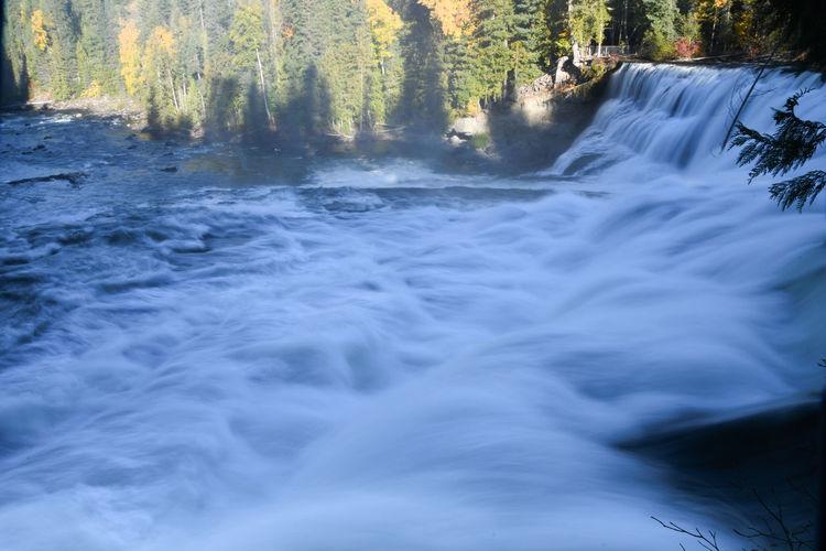 Dawson Falls im