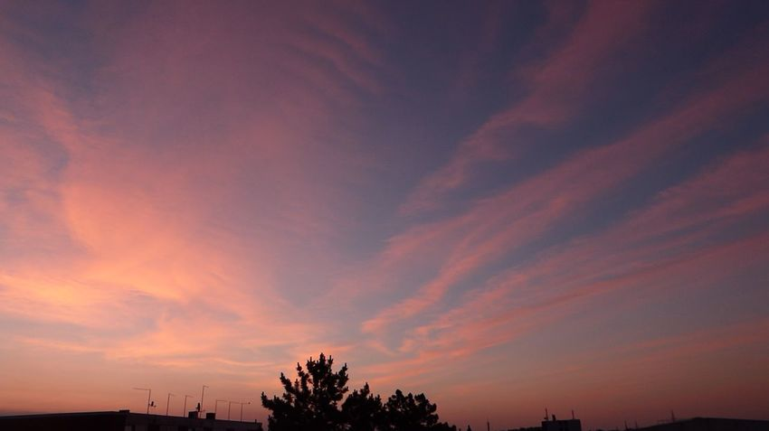 Morningview at 5am😍 Dramatic Sky Beauty In Nature Tranquil Scene Tranquility Simple Beauty Enjoying The View ForTheLoveOfPhotography Summer Views For My Friends 😍😘🎁 For The Love To Life My Soul's Language Is📷 Thankful🦄 View From My Window😍 Sommergefühle