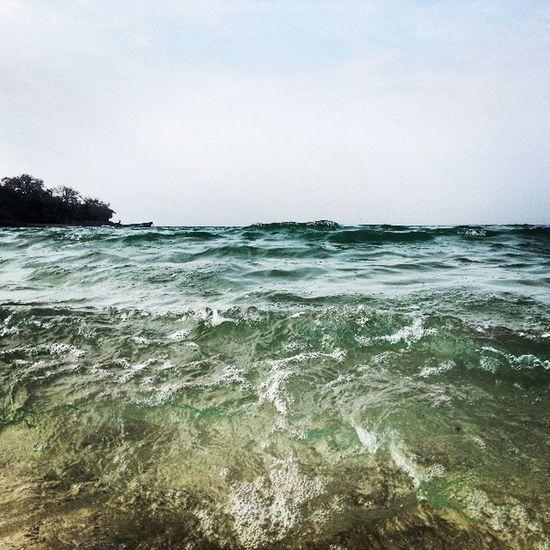 Dalga Wave Okyanus Ocean pacific pasafik