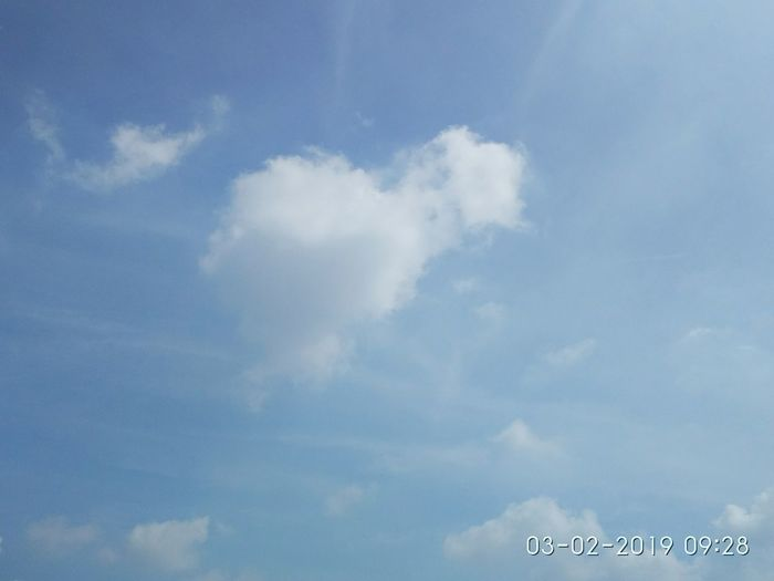 little white cloud and blue sky White Clouds White Clouds Blue Sky Bluesky Blue Color Blue Sky White Clouds Blue Sky And Clouds Blue Sky And White Clouds White Clouds Vapor Trail Airshow Aerobatics Airplane Flying Bird Sky Cloud - Sky
