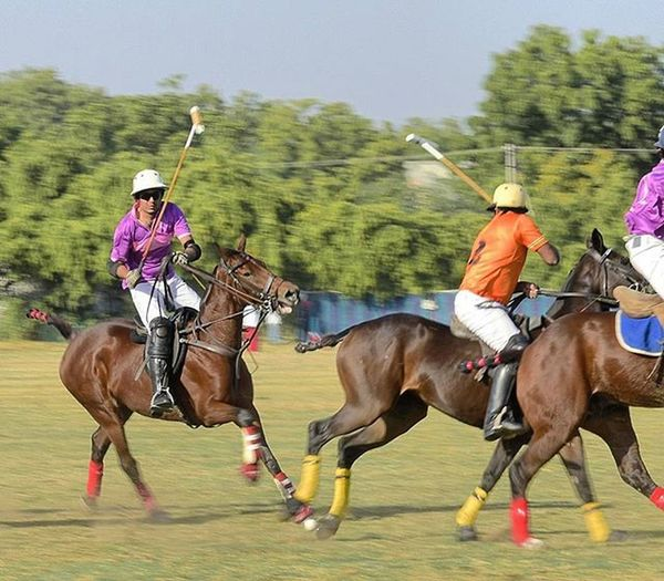 Jopolo Polo Jodhpur Instamood Igersjodhpur Igersjaipur Click_india_click Wwim13 WWIM13Jodhpur Likeforlike Likeforfollow Followme