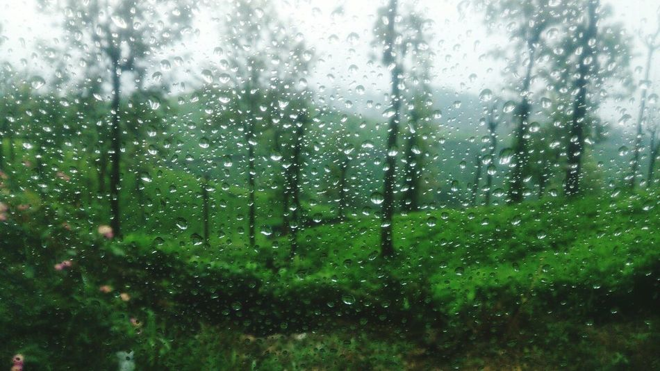 Water Droplets Weather Drop Wet Rain Window Rainy Season RainDrop Nature Monsoon Water Nature_collection Water Drops Photograph Photo Graphy Droplets Water Drops On Window Indianphotography