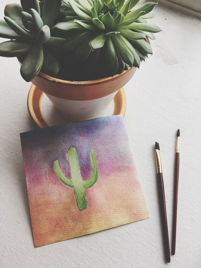 EyeEm Selects Indoors  Leaf Plant No People Flower Close-up Freshness Day Succulents Cactus Painting Paintbrush Watercolor Colors Potted Plant Sunlight EyeEmNewHere
