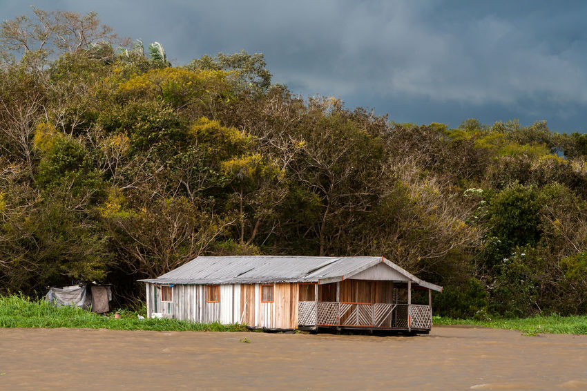 Amazon River Brazil Colored Habitation Household Tree Architecture Colorful Floating House Floating Houses House Jungle Nature Rainforest River Tranquility Unfunded Water Wood House