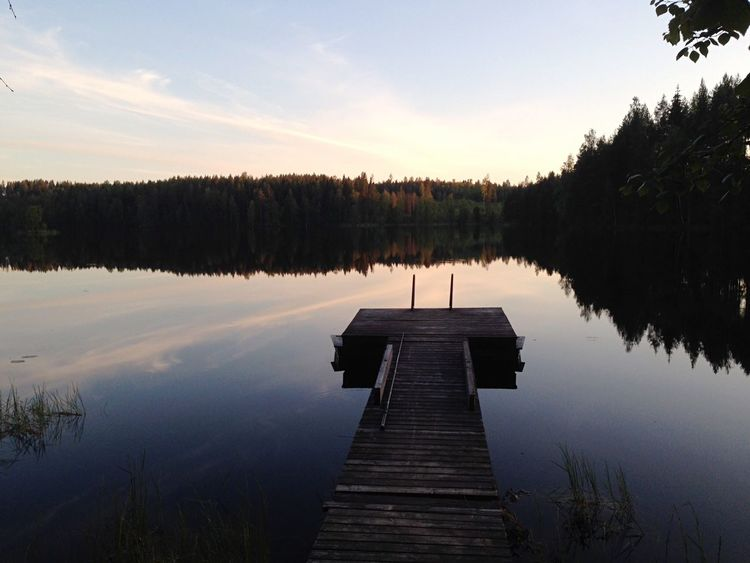 Wood Mirrored Lake Beauty In Nature Scandinavia
