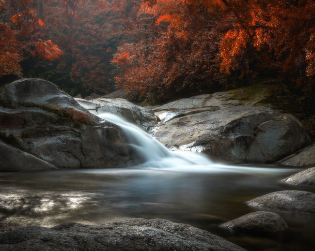 Water Rock Beauty In Nature Scenics - Nature Rock - Object Flowing Water Nature Autumn Motion Waterfall Solid Forest Environment No People River Tree Long Exposure Change Land Flowing Outdoors Power In Nature Stream - Flowing Water Running Water