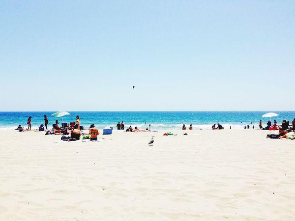 R. Clear Sky Sea Beach Blue Sand Horizon Over Water Sky Water Nature Vacations Summer Day Ocean Malibu Malibu Beach USA