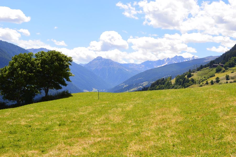 Alto Adige South Tyrol Südtirol Italien Italy Italia Ultental Mountain Beauty In Nature Scenics - Nature Sky Plant Tranquility Tranquil Scene Tree Mountain Range Cloud - Sky Growth Green Color Environment Landscape Nature Land Non-urban Scene Day Grass No People