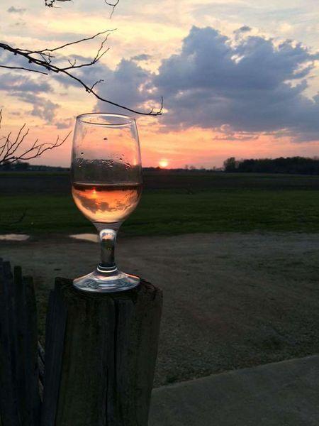 Alcohol Sunset Wineglass Drink Refreshment Drinking Glass