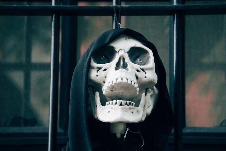 Close-Up Human Skull