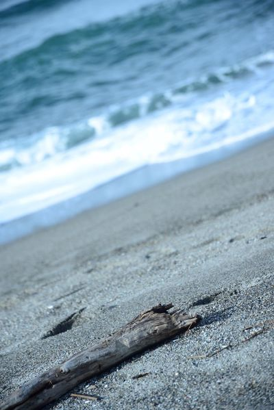 今日の海♬*゜ SAKATA YAMAGATA Nature_collection Photography Photo Nature EyeEm Nature Lover Sea