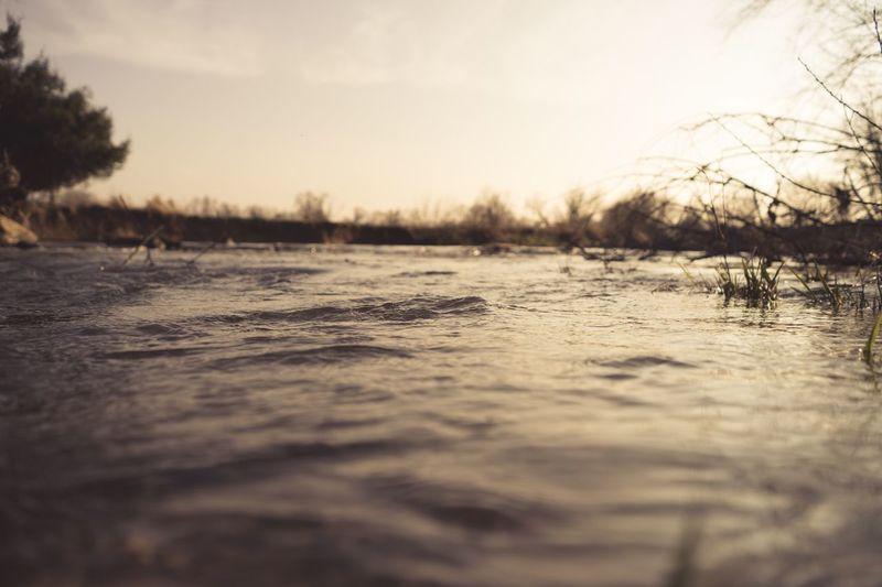 River Walking Around Enjoying The Sun Sunshine Calm
