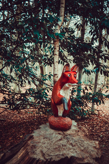Day Forest Forest Walk Fox Fox Sculpture Gruffalo Gruffalo Trail Lots Of Leaves Nature No People Outdoors Trees Wooden Fox WoodLand