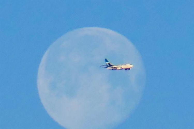 Blue Flying Sky