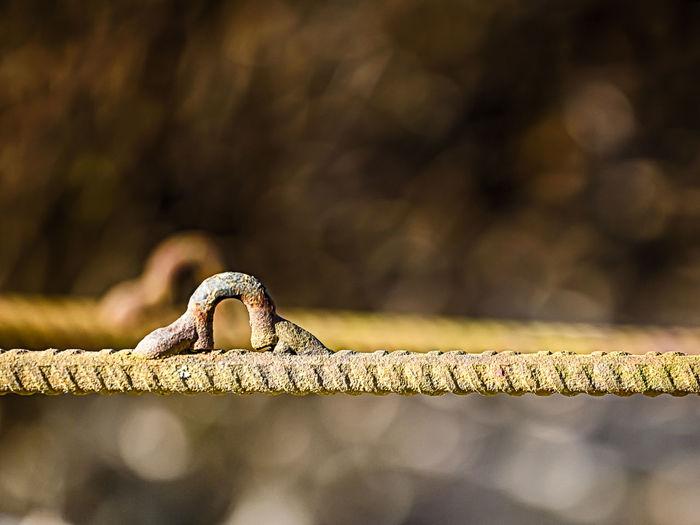 Close-up of hooks on rusty iron