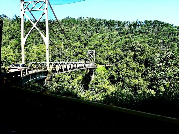 Bridge View Costa Rica Allgreen Pura Vida ✌ Rio Celeste