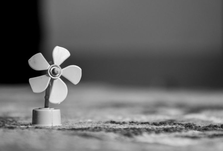 wind mill of lilliput... miniature Minimalism Miniature Windmill Smallwindmill Monocrome Blackandwhitechallange Blackandwhiteonly Parbhani Puneinstagrammers Mumbai Toys Toy Toyphotography Fan Indoor Beach Day Outdoors Ribbon - Sewing Item No People Close-up Nature