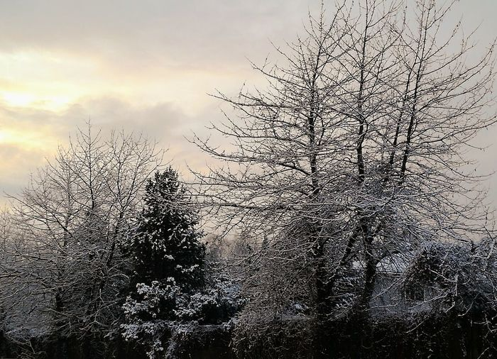 'Winter Wonderlands..' #Oslo #Wintertime #Pretty #Beautiful #COLD Nature