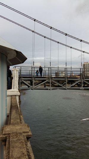 Пешеходный мост в Сочи мост Сочи Sochi Water Sea Business Finance And Industry Fishing Cloud - Sky Beach Outdoors Day Sky