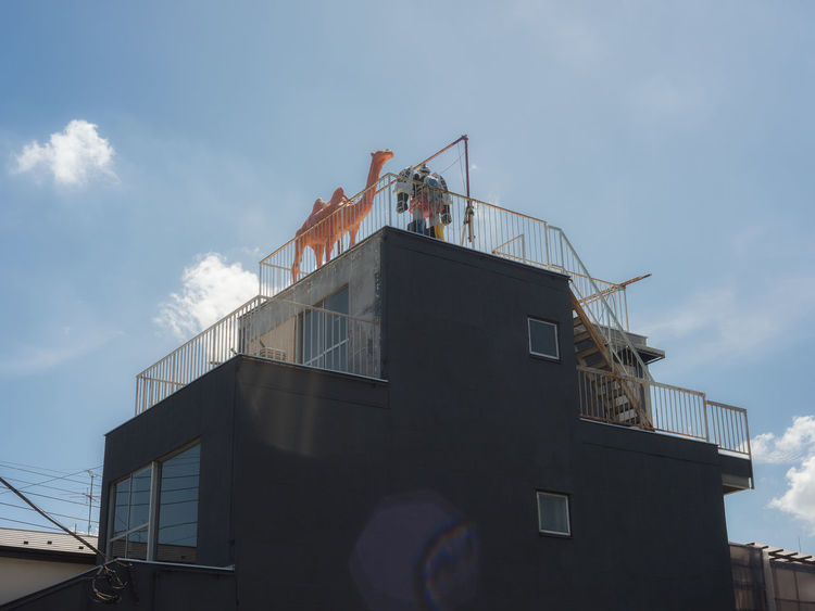Animals and Robots wait on the rooftop in Tokyo. Japan Roof Rooftop Statue Tokyo Animal Themes Camel Chameau Cloud - Sky Day Dusk Japon Low Angle View Occupation Old Buildings Outdoors Robot Sculpture Sky Street Streetphotography Summer Sunlight Taitoku Yanaka