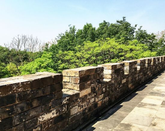 Ruins Ruins Architecture Green Green Green!  Heritage Site China Nanjing Discovering Walking Around Nature Architecture_collection Travel Destinations Tourist Attraction  Good Place Enjoying The Sights Fortification Wall