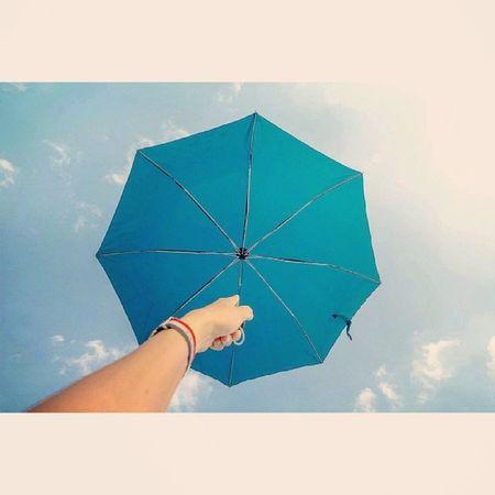 A99 1635z Sonnar Zeiss 우산 하늘 구름 경마공원 나들이