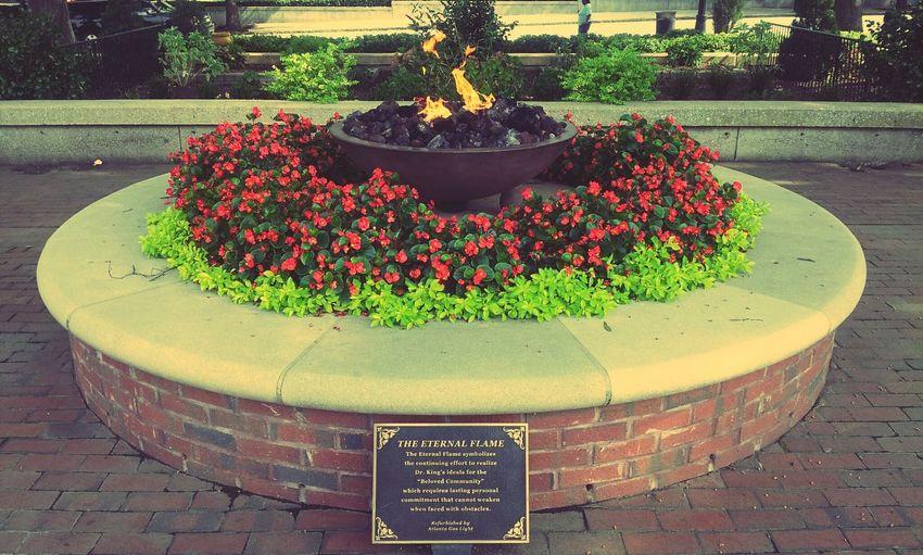 RePicture Wealth MLK Memorial