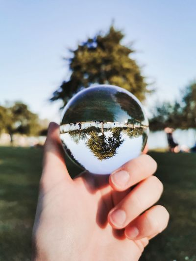 Close-up of hand holding crystal ball against tree and sky