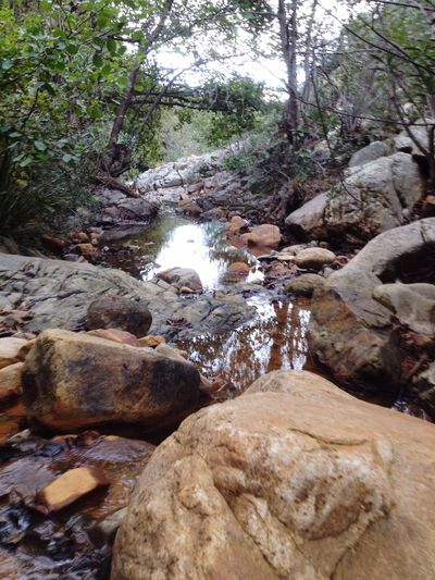 Nature Rock - Object Tranquility Beauty In Nature Tranquil Scene Water Forest Tree Idyllic Outdoors Non-urban Scene Scenics Waterfall No People Stream - Flowing Water Nature Photography Mountains Wwf Mountain Sardegna Sardinia Santa Lucia,sardegna Assemini