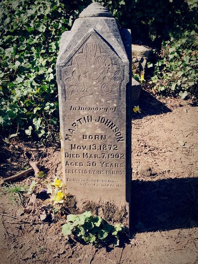 Tombstone Text Cemetery Communication Stone Grave Solid Day Nature The Past No People History Sunlight Memorial Plant Stone Material Architecture Outdoors