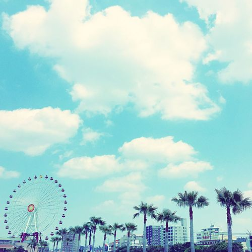 観覧車 やし 美浜 Ferris Wheel Ferriswheel Palms Palm Palm Trees Palm Tree Palmtrees Palmtree Clouds Clouds And Sky Okinawa Sky
