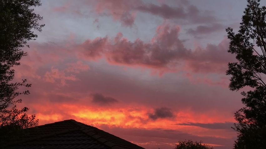 Sunset ☀️🌤☀️ Sunset Sillouette Dramatic Sky Springtime No Edit/no Filter EyeEm Best Shots EyeEm Nature Lover EyeEm Gallery ☀️🌤☀️
