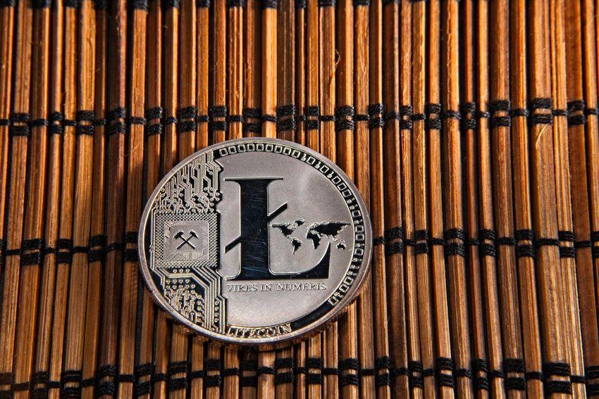 Shining metal LTC litecoin coin on bamboo background. BTC Deep Web Economy Gold LTC Virtual Bamboo Bamboo - Material Bitcoin Blockchain Coins Crypto Cryptocurrency Cryptography Dark Web Digital Finance Litecoin Money Trade